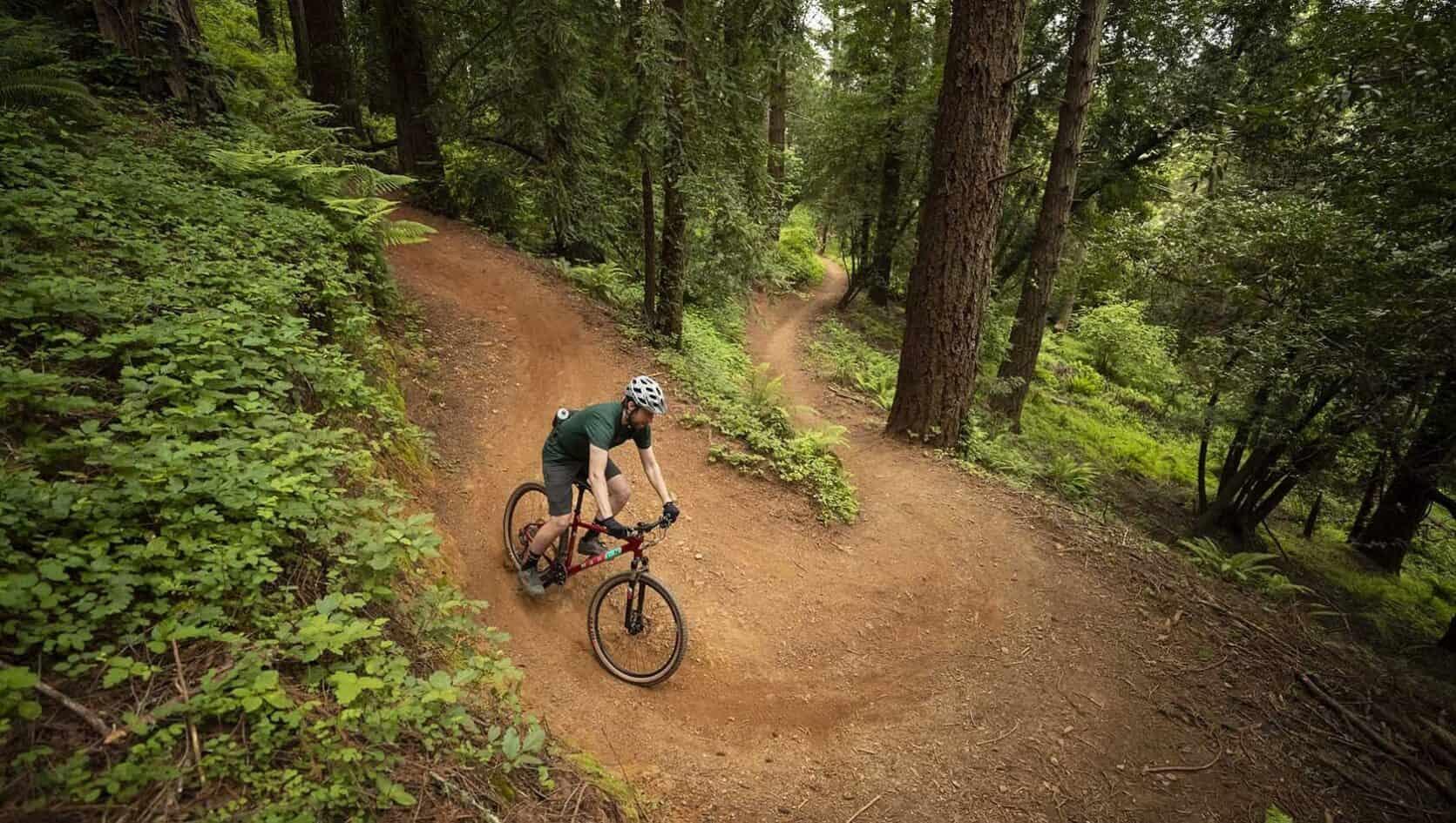 2020 Bobcat Trail 4
