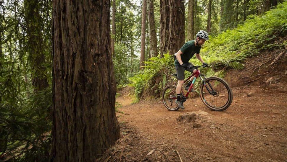 2019 Bobcat Trail 4