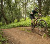 Bobcat Trail 3