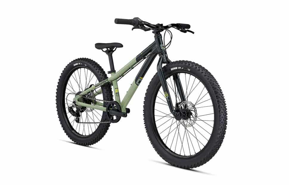 2021 Ramones 24 Green