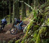 Trail 429